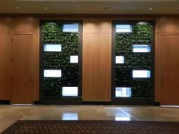 interior design on wall at home ultimate guide to living green walls ambius