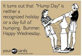 Hump Day Meme Dirty - dirty hump day memes 28 images 35 very funny hump day memes