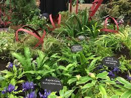 northwest flower and garden festival celebrates 30 years knkx