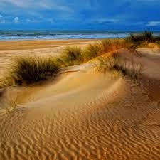 sunny bright sandy beach landscape ipad air wallpaper download