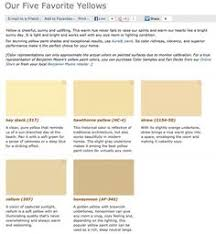 papaya paint color sw 6661 by sherwin williams view interior and