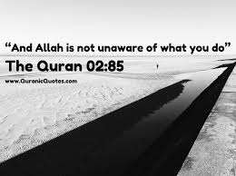 290 best quranic quotes images on pinterest quran quotes