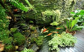 Japanese Garden Ideas 15 Stunning Japanese Garden Ideas Garden Club