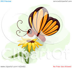clipart of a butterfly landing on a sunflower royalty free