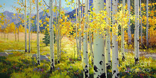 afternoon aspen grove painting by gary kim
