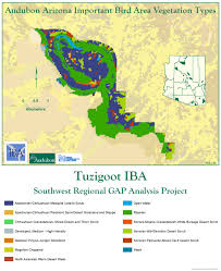 Mesa College Map Tuzigoot Iba Arizona Important Bird Areas Program