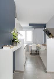 entree en cuisine rénovation d une cuisine d entrée et bureau lyon 07