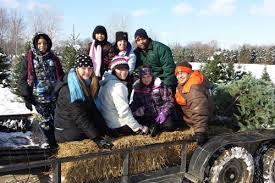 storeyland christmas tree farm