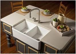 Ferguson Kitchen Sinks Ferguson Farmhouse Sink For Sale Elysee Magazine