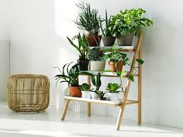 choosing plant stands for indoor plants wearefound home design