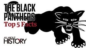 the black panthers top 5 facts youtube