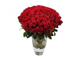 valentines day roses 14 best s day roses the independent