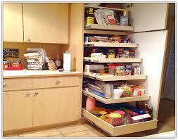 great kitchen storage ideas brilliant the necessity of kitchen storage cabinets blogbeen