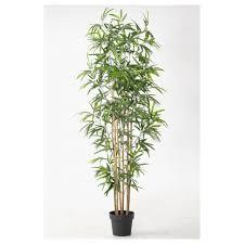 plant stand literarywondrous plant pottand photos design
