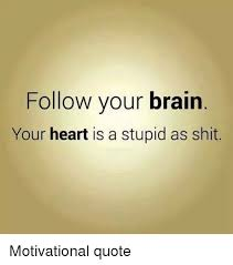 Follow Your Heart Meme - follow your brain your heart is a stupid as shit funny meme on