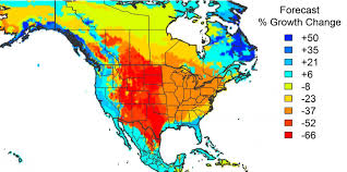 Map Of America Continent by American Forests Unlikely To Save Us From Climate Change Study Finds
