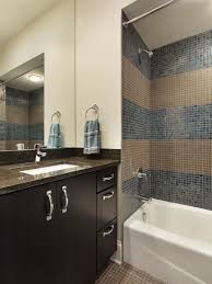 Boys Bathroom Ideas Warm Boys Bathroom Ideas Modest Decoration Houzz Bathrooms