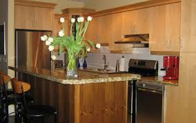 Stand Alone Kitchen Cabinet Flashy Wooden Kitchen Furniture Tags Kitchen Wood Cabinets