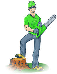 tree removal services near me in orlando best service best price
