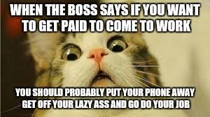 Get Off Your Phone Meme - funny animals imgflip