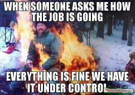 Everything Is Fine Meme - when someone asks me how the job is going everything is fine we