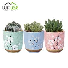 Cute Succulent Pots Online Get Cheap Bonsai Ceramic Pots Aliexpress Com Alibaba Group