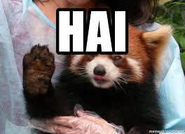 Raising Hand Meme - hai red panda raising hand meme generator
