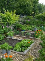 gardening ideas for landscape traditional with veggie patch