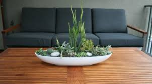 Large Succulent Planter Indoor Gardening Ideas To Beautify Your Space
