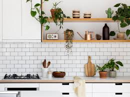 home trends and design reviews kitchen plants fancy ikea is getting springy growing herbs