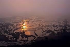 bureau 馗olier ikea 王巨土风光摄影作品展 展览 artlinkart 中国当代艺术数据库