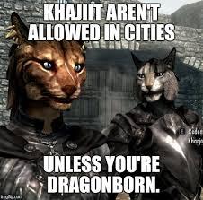 Khajiit Meme - khajiit dragonborn imgflip