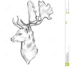 deer face side sketch stock illustration image 60837853
