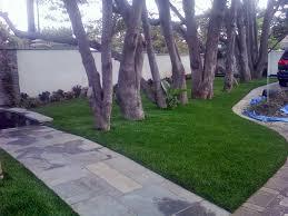 Backyard Landscaping Cost Estimate Artificial Turf Cost Zapata Texas Backyard Deck Ideas