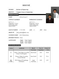 Resume Formate It Company Resume Format