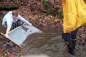 stream ecology web quest process