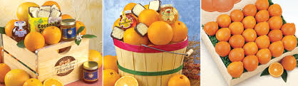 fruit gift ideas corporate gift gift citrus business fruit gift