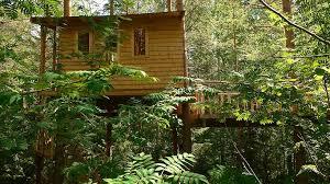 rabbit treehouse woods an artist residency on rabbit island with photos