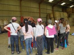 chambre d agriculture tarn communication deux classes de villeneuve sur tarn à la rencontre