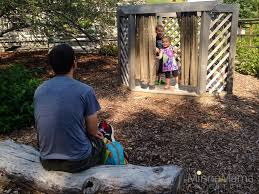 mn landscape arboretum minnesota landscape arboretum for kids