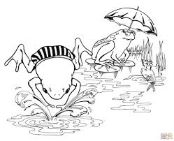 frogs coloring pages within frog coloring page eson me