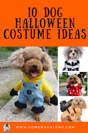 dog halloween costumes images 13 best dog halloween costumes images on pinterest halloween