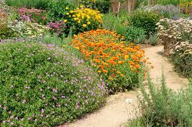 do it yourself fairy garden ideas modern garden