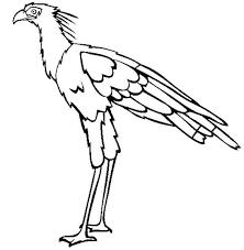bird coloring page rf secretary clipart overworked secretary clip art clip art