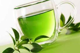 Teh Oyama teh hijau oyama keunggulan teh hijau