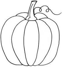 pumpkin 7 thanksgiving towels and teas