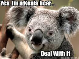Meme Generator Koala - meme creator yes im a koala bear deal with it meme generator