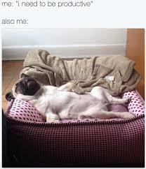 Sleepy Memes - sleepy memes album on imgur