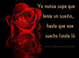 bonitas de rosas rojas con frases de amor imagenes de amor facebook rosas rojas animadas con movimiento y frases cortas de amor