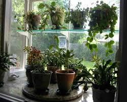 kitchen garden window ideas 7 best kitchen window garden images on garden windows